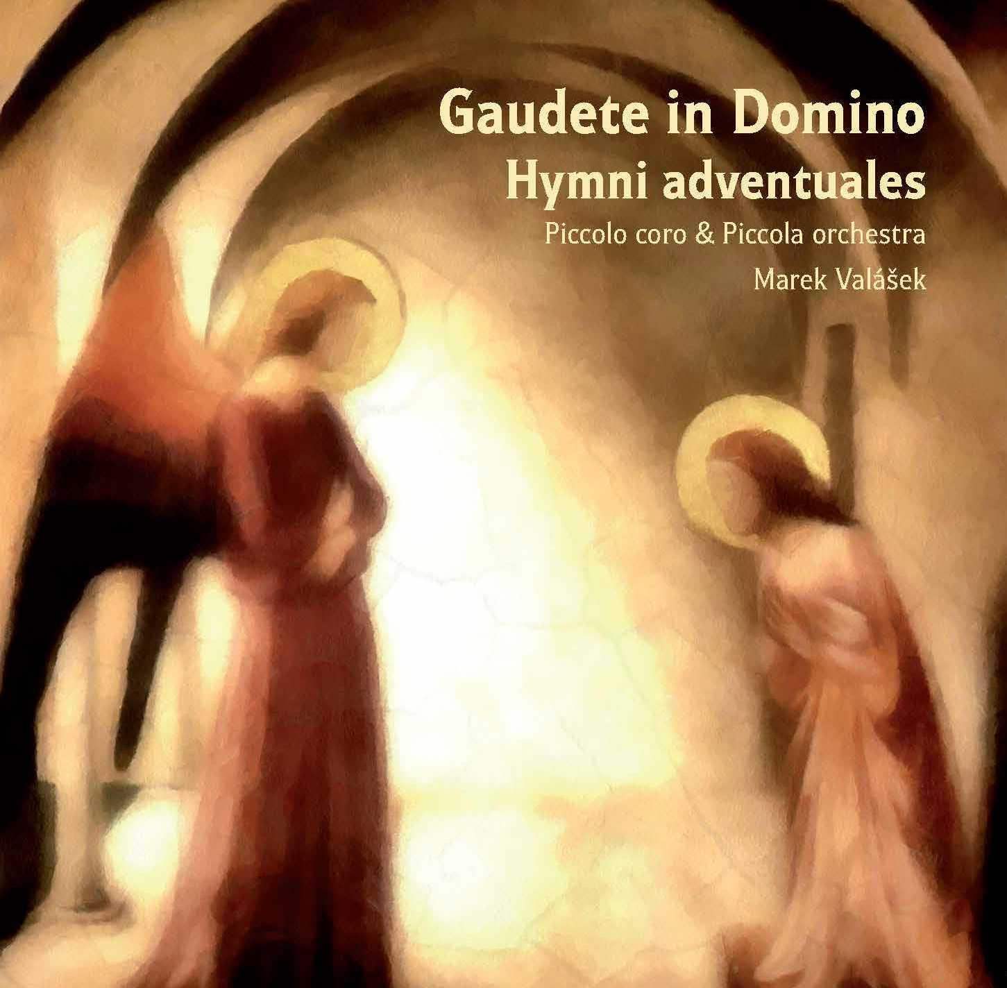 2013_Gaudete in Domino